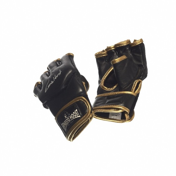 Ernesto Hoost Free Fight Gloves