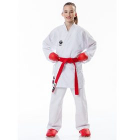Tokaido Kumite Master Junior