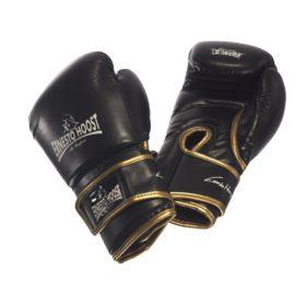 Ernesto Hoost Amateur bokshandschoenen