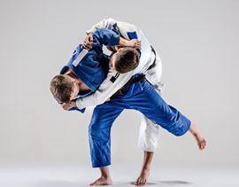 Compleet in judo