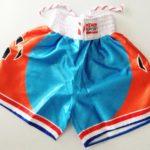 Nihon Kickboxing Shorts Dutch Lion maat L