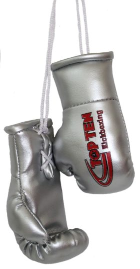 "TOP TEN Mini bokshandschoenen ""TOP TEN Kickboxing"" zilver"